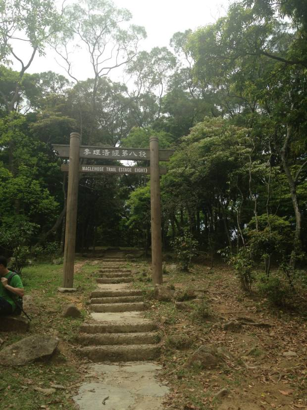 Just keep following the signs to Tai Mo Shan / Route Twisk and keep on Maclehose Trail Stage 8