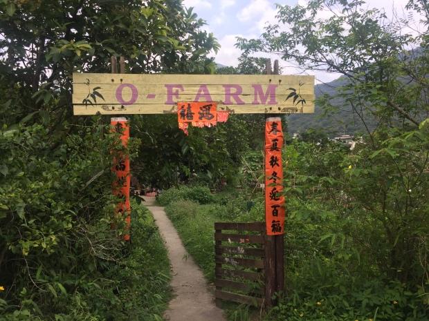 IMG_9802 Hok Tau Country Trail