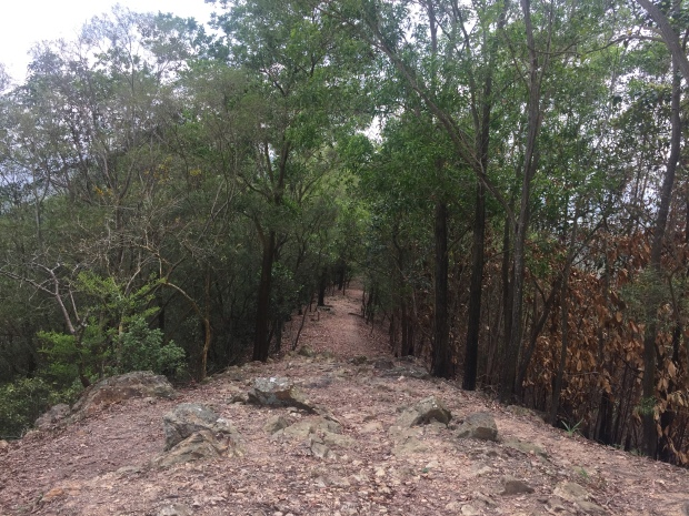 IMG_9807 Hok Tau Country Trail